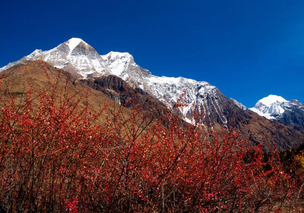 Colours of Himalaya