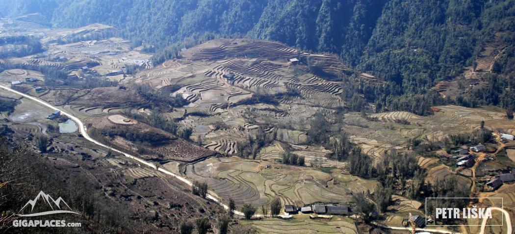 Rice fields in Sapa