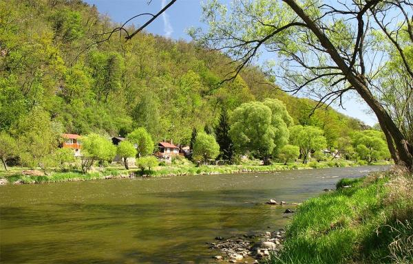 The picturesque banks of the river Sazav