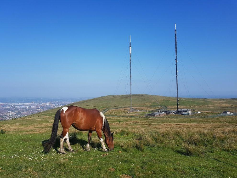 Divis a Black mountain