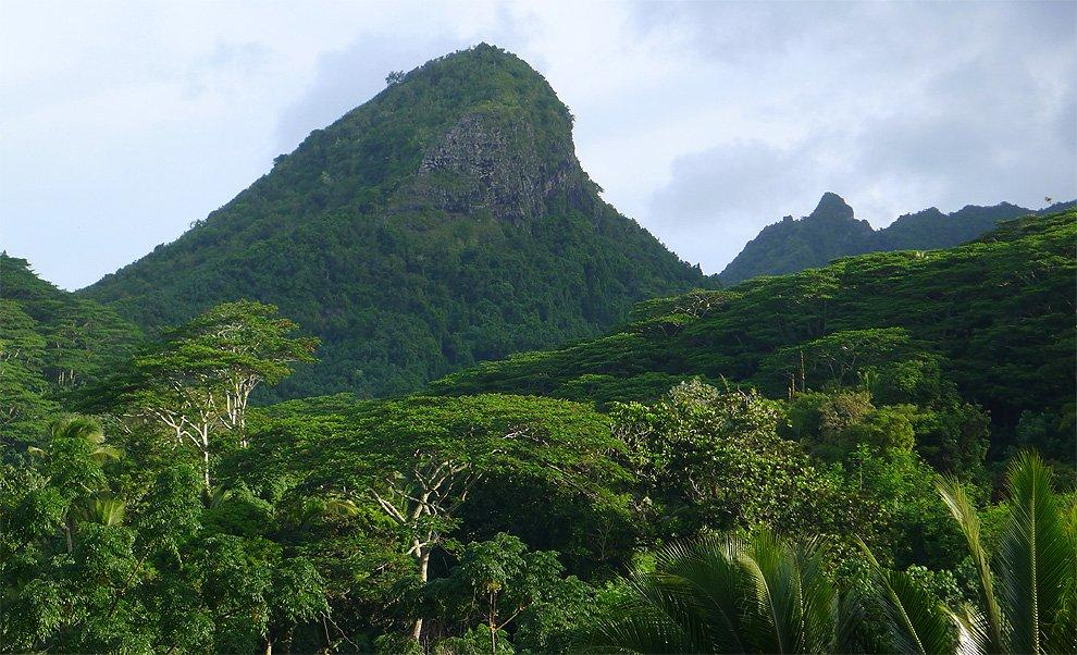 The massif above the jungle