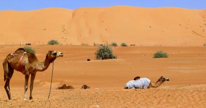 18 TOP: The most beautiful deserts of the world - Arid part of the