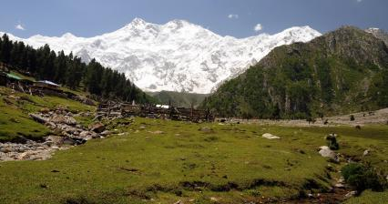 Fairy meadows under Nanga Parbat