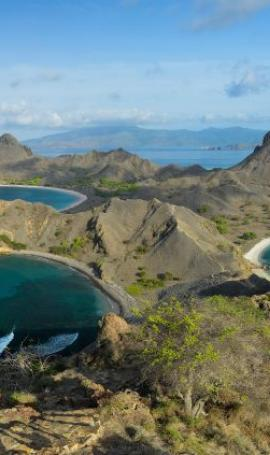 The most beautiful places of Flores