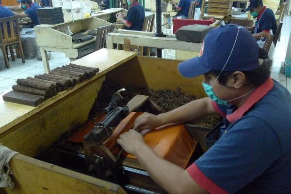 Filling of cigars