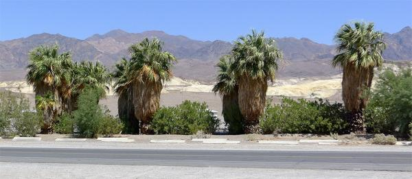 Oáza Furnace Creek