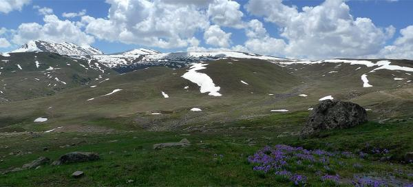 Trip to Deosai plains